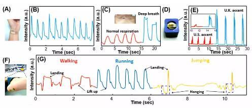 该压线性范围,压力传感器拥有了探测人体生理信号,声音和运动的方面